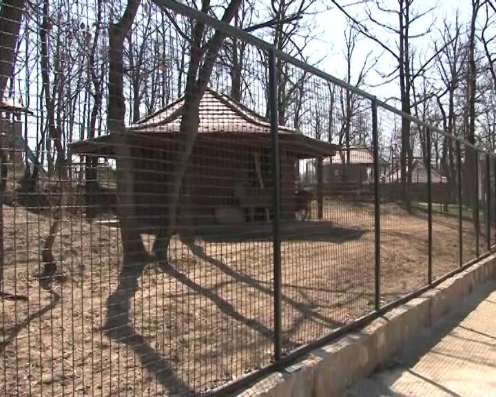 5. rođendan ZOO vrta u Boru