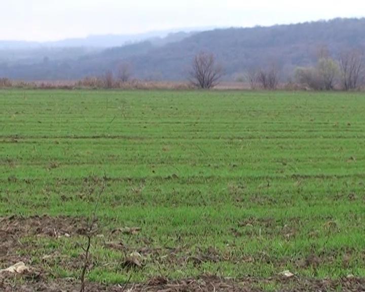 I ove godine besplatna analiza zemljišta u opštini Žagubica