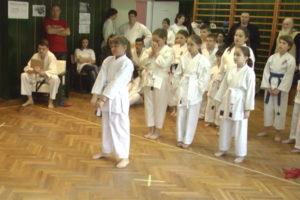 Karate kamp Gamzigradska banja 1