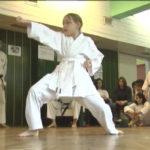Veče borilačkih veština u Boru