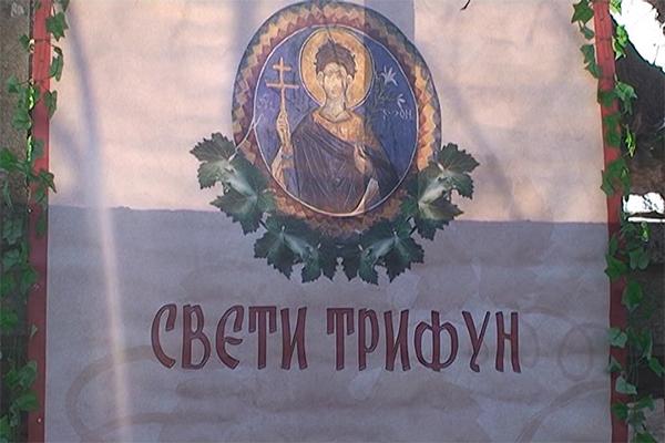 Proslava Svetog Trifuna na rajačkim pivnicama kod Negotina