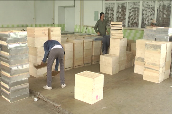 Košnice za subvencionisanje pčelarstva u Zaječaru
