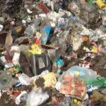Velika akcija čišćenja divlje deponije u Zaječaru