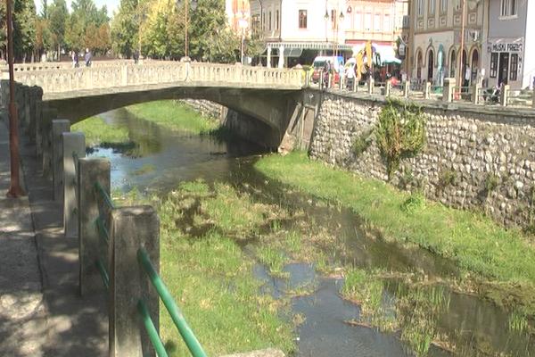 Životna sredina budućnost i izazovi održivog razvoja jugoistočne Srbije