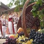 """Na Rogljevačkim pivnicama kod Negotina održana je turistička i kulturno-umetnička manifestacija """"Krajinska berba"""""""