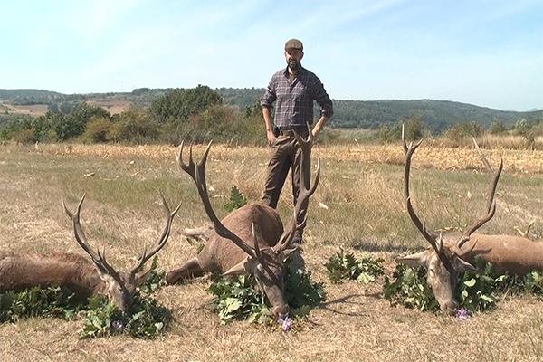 U Salaškom kraju odstreljen jedan od najvećih jelena u Srbiji