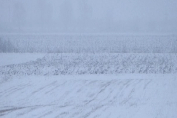 Sneg je dobrodošao ratarskim kulturama