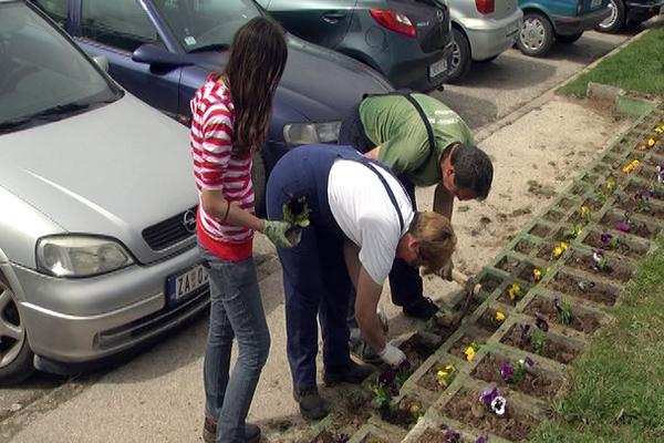 U toku je prolećno uređivanje Zaječara i zamena ulične rasvete