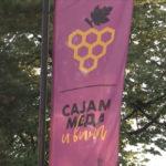 Otvoren 13. Međunarodni sajam meda i vina u Negotinu