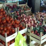 Kako sačuvati povrće od pojave bolesti