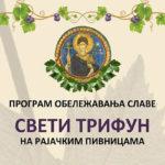 Negotin:  Proslava Svetog Trifuna u Rajcu