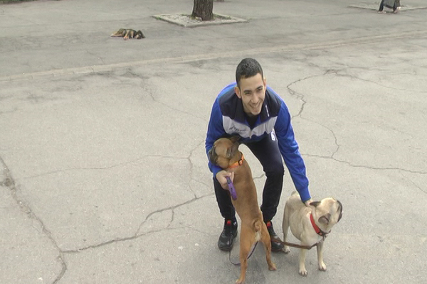PRIMER SVOJIM VRŠNJACIMA: Srednjoškolac šeta pse da bi zaradio džeparac (VIDEO)
