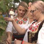 """U Rogljevu održana manifestacija """"Krajinska berba"""""""