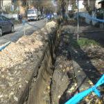 Korenje lipa u Ivana Milutinovića otežava rekonstrukciju vodovodnih cevi (VIDEO)